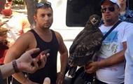 В Крыму туристы отказались платить за фото с орлом: их избили