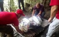 Потерялся на пять дней: в Карпатах спасли 90-летнего мужчину