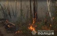 Пожар под Чернобылем: задержали подозреваемую в поджоге