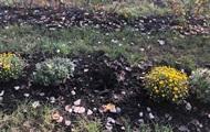 В Киеве украли кусты и цветы из обновленного парка