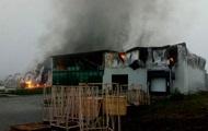 Крупнейшее предприятие по переработке чеснока сгорело в Одесской области