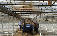 На Прикарпатье комбайном уничтожили 89 тысяч кустов конопли