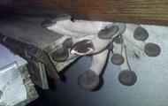 В вагоне Укрзализныци обнаружили грибы