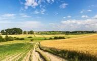 В Украине есть 12 теневых способов обхода моратория на продажу земли - замминистра экономики