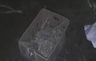 У Кривому Розі знайшли кімнату, забиту коноплями