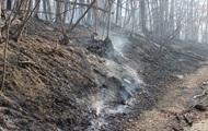 У Криму друга велика лісова пожежа за добу