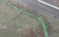 В Киеве позеленела река