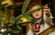 Проверить легальность новогодних елок можно будет в мобильном приложении