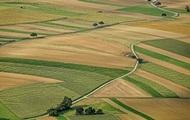 В шести областях запускают пилотный проект Аграрного реестра