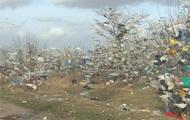 На Миколаївщині тонни сміття опинилися на деревах