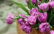 Международный женский день 8 марта: будет ли выходным