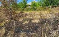 У Харківській області пенсіонерка згоріла, намагаючись випалити суху траву