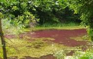 На Чернігівщині водойма стала рожевою з невідомих причин