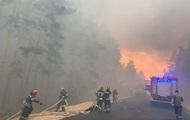 На Луганщині локалізували лісову пожежу