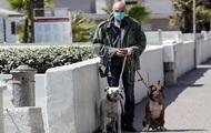 Депутат Бурматов рассказал о плюсах обязательного чипирования животных