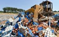 Десятки тонн продуктов были уничтожены в России