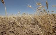 Гидрометцентр показал масштабы засухи в Украине