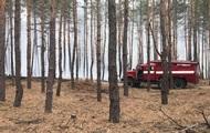 Під Дніпром сталася лісова пожежа