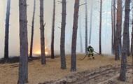 На Луганщині масштабні пожежі, евакуюють села