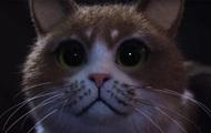 Вышел первый фильм ужасов для кошек