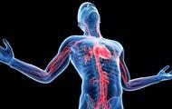 Найден ранее неизвестный орган тела человека