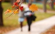 Синоптики озвучили прогноз погоди на листопад