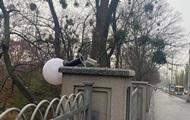 В Киеве вандалы разбили на бульваре светильники