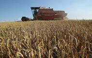Китай закупил зерна на Украине больше всех