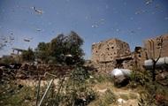 В Сомали объявили ЧП из-за нашествия саранчи