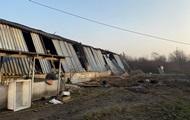 В Мукачево пожар уничтожил свинокомплекс
