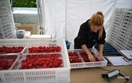 Україна і Німеччина обговорюють працевлаштування сезонних робітників
