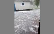 У Кіровоградській області град знищив врожаї