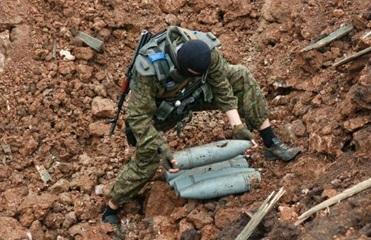 Саперы ВСУ обезвредили 179 взрывоопасных предметов
