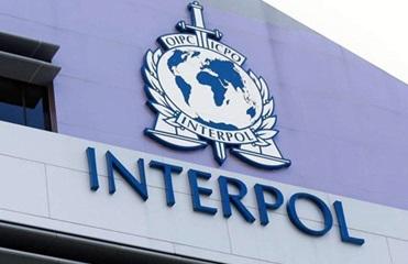 В Одесской области задержали разыскиваемого Интерполом иностранца