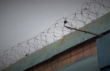 Сотрудников Бердянской колонии подозревают в пытках заключенных