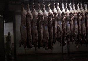 В России зафиксированы случаи заболевания сибирской язвой