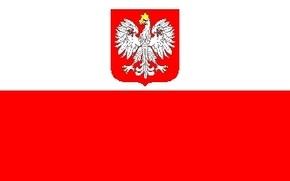 Экс-премьер Польши: Варшава заработала имидж русофоба