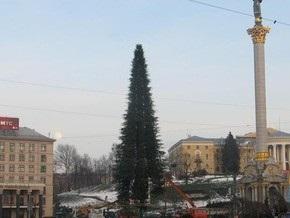 На Майдане закончили монтировать главную елку страны