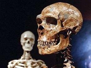 Львовские студенты раскопают стоянку неандертальцев на Прикарпатье
