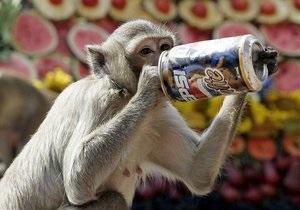 Ученые обнаружили у обезьян склонность к разнообразию
