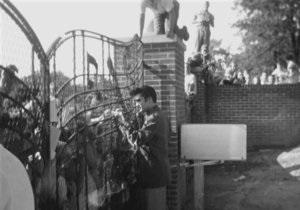 Обнаружены три ранее неизвестных фото Элвиса Пресли