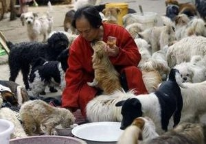 Защитники животных блокировали на подъезде к Пекину фуру с собаками для ресторанов