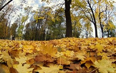 6 ноября в Украине будет теплым, но местами дождливым