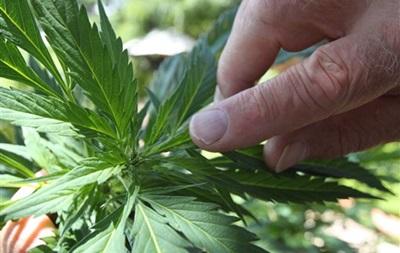 Жители одного из штатов США поддержали введение налога на марихуану