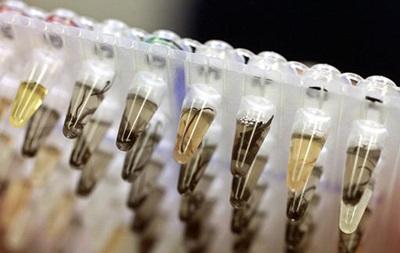 Эксперты предупреждают о глобальной угрозе бактерий