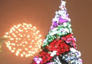 Украина подарит Ватикану рождественскую елку
