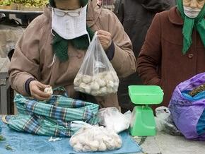 Киевские таможенники изъяли контрабанду чеснока на полмиллиона гривен