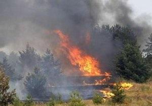 В Днепропетровской области горят 100 гектаров леса