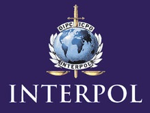 Неволя возглавил украинское бюро Интерпола