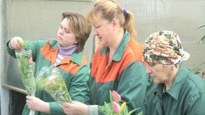 Женщины-озеленители жертвуют любовью к себе ради цветов - BBC
